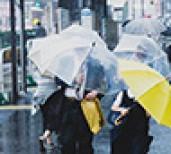 台風被害はどの保険で補償される??
