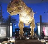 6500万年前